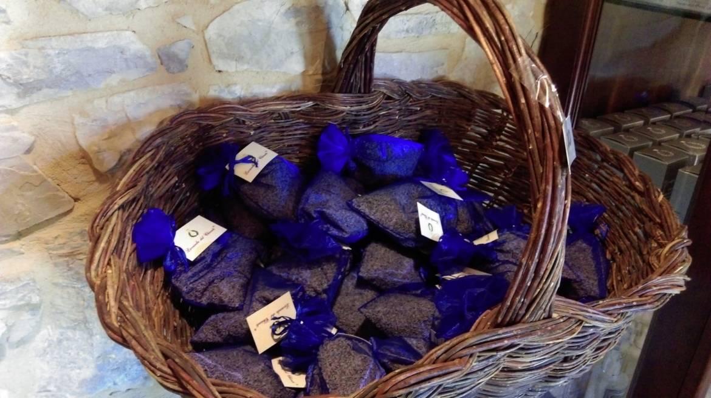 lavanda-chianti-09.jpg