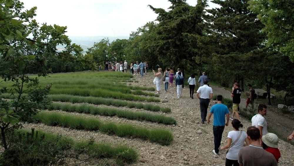 Un gruppo turistico in visita guidata ad alcuni dei campi coltivati