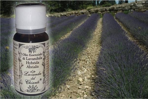 Flacone in vetro farmaceutico di puro olio essenziale di Lavanda ibrida Abrialis