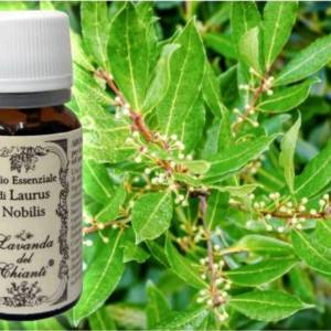 Pharmaceutical glass bottle of pure Laurum nobilis essential oil