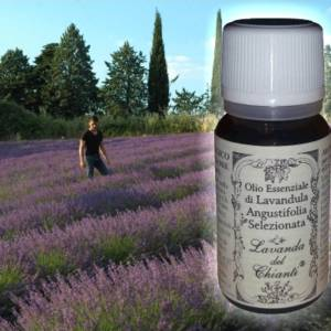 Pharmaceutical glass bottle of pure Lavender angustifolia Selected essential oil