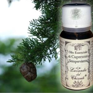 Pharmaceutical glass bottle of pure Cypress essential oil