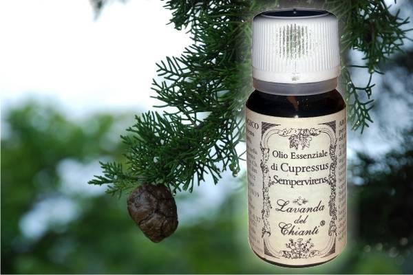Flacone in vetro farmaceutico di puro olio essenziale di Cipresso