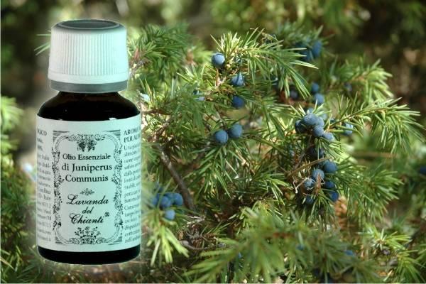 Flacone in vetro farmaceutico di puro olio essenziale di Ginepro