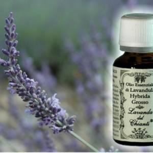 Flacone in vetro farmaceutico di puro olio essenziale di Lavanda ibrida Grosso
