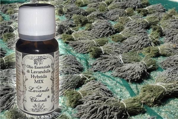 Flacone in vetro farmaceutico di puro olio essenziale di Lavanda ibrida MIX