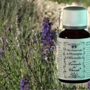 Pharmaceutical glass bottle of pure Hyssopus essential oil