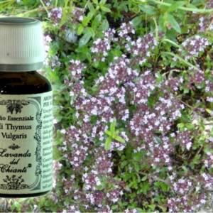 Flacone in vetro farmaceutico di puro olio essenziale di Timo