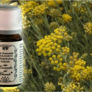 Pharmaceutical glass bottle of pure Helichrysum italicum essential oil