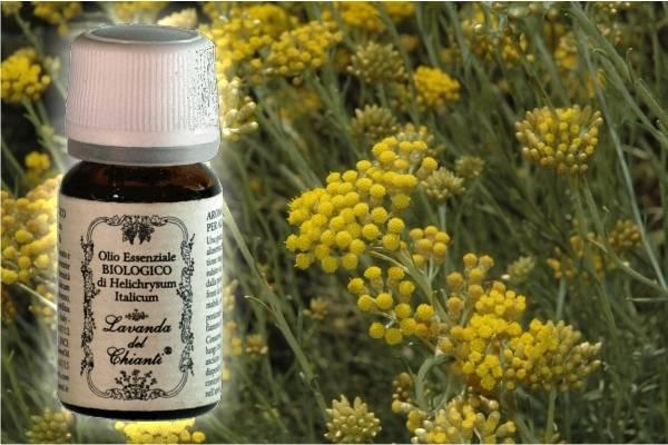 Flacone in vetro farmaceutico di puro olio essenziale di Elicriso italico